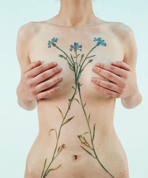 Closer view, how flowers become a tattoo by rit.kit.tattoo 🌿✨#liveleaftattoo #botanical #botanicaltattoo #flowertattoo #floraltattoo #cornflower #cornflowertattoo #dsfloral