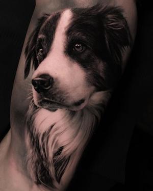 Little dog portrait by Thomas Carli Jarlier #thomascarlijarlier #dog #dogportrait #realism