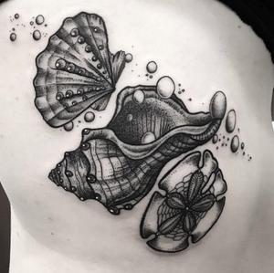 Seashells by a resident artist @kreska_tattoo at @10_Thousand_Foxes #seashells