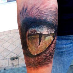 #hyperealism #realistic #eye #lion #Africa #fullcolor #StefanoAlcantara