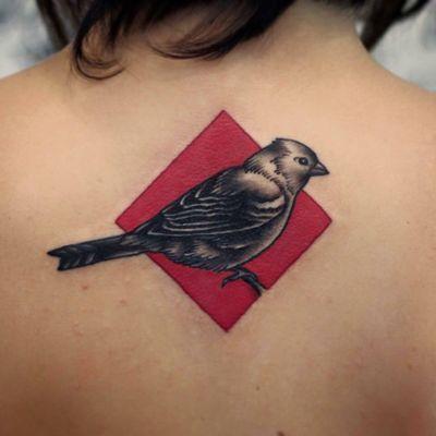#bird #sparrow