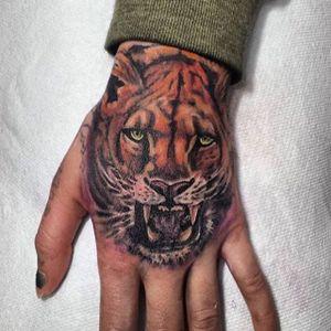 Fierce feline by Haley Adams #feline #tiger #lion #bigcat #realism #castrotattoo #thecastro #bayarea #sanfrancisco