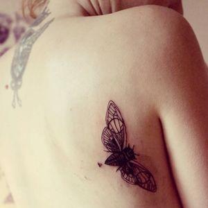 #insect #beetle #blackwork #dotwork #geometric #minimalist