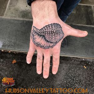 Done by Geddes Jones (geddesjones on IG) / Hudson Valley Tattoo Company   #hvtc #hudsonvalleytattoo #blackwork #blckwrk #seashell #handtattoo