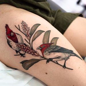 Red-crested Cardinals by Sophia Baughan #SophiaBaughan #illustrative #realism #realistic #watercolor #birds #feathers #wings #flowers #leaves #Cardinal #color #tattoooftheday