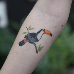 Toucan tattoo by Olga Handpoke #OlgaHandpoke #birdtattoos #color #handpoke #sticknpoke #nonelectric #toucan #tropical #bird #feather #wings #leaves #branch #nature
