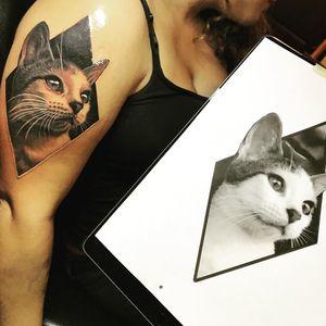 Sweet kitty tattoo by Nikki Hurtado #NikkiHurtado #petportraittattoo #blackandgrey #realism #realistic #hyperrealism #pet #cat #kitty #love #animal #nature #diamond #tattoooftheday