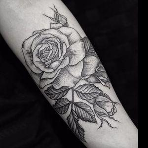 Rose tattoo by LuCi #LuCi #engraving #blackwork #monochrome #monochromatic #rose