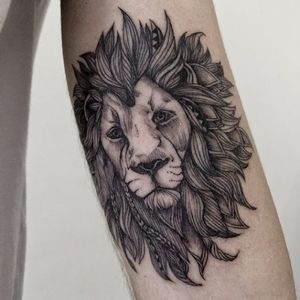 Leão de juba esvoaçante e incrementada #SashaMasiuk #leao #lion #liontattoo #lionhead #felino #reidaselva #theking #animaltattoo #tatuagemdeaninais #blackwork #fineline