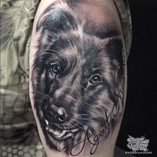 Smooth black and grey German Shepherd portrait by João Morais. #dog #germanshepherd #realism #blackandgrey #JoãoMorais