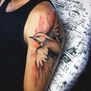 Majestoso #DenerSilva #tatuadoresdobrasil #brasil #brazil #brazilianartist #sketch #sketchstyle #watercolor #aquarela #passaro #bird #ave #estilorascunho