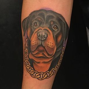 Traditional style rottweiler tattoo by Jeffrey Scott. #dog #rottweiler #traditional #JeffreyScott