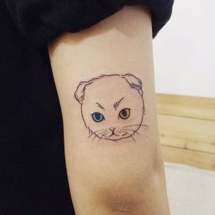 Kitty with heterochromia. #cat #cattoo #tattooistdoy #doy #southkorea