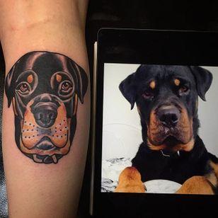 Rottweiler pet portrait by @holmestattooer. #traditional #petportrait #dog #rottweiler #holmestattooer