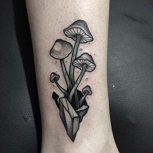 Mushroom Tattoo by Davide Pozzato #blackwork #blackworkmushroom #mushroom #mushroomtattoo #mushroomtattoos #fungi #fungitattoo #fungitattoos #mushroomdesigns #DavidePozzato