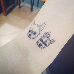 Sweet dogs by tattooist Doy #dog #doy #tattooistdoy