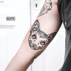 #gato #cat #GabrielBilotta #dontcrytattoo #pontilhismo #dotwork #fineline #blackwork #RioDeJaneiro #brasil #TatuadoresDoBrasil