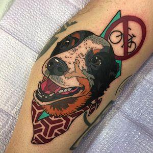 Por Geary Morrill #GearyMorrill #gringo #colorido #colorful #psicodelico #psychedelic #cao #dog #cachorro #doglover #pet #petlover #pattern #padrao #bicicleta #bike