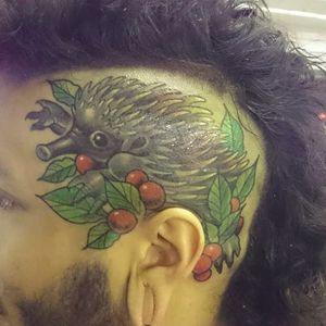 This guys got echidnas on the brain. By Mark Alan. (via IG -- captaincarlisle) #markalan #echidna #monotremes