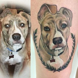 Neo traditional pit bull tattoo by Beth Stanley. #neotraditional #dog #petportrait #pitbull #BethStanley