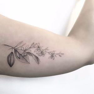 #SindyBrito #tatuadorasdobrasil #blackwork #delicadas #fineline #traçofino #cute #flor #flower