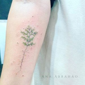 Fine line tattoo by Ana Abrahão. #AnaAbrahao #fineline #subtle #pastel #plant #script