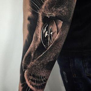 Cat Tattoo by Samuel Rico #cat #cattattoo #blackandgrey #blackandgreyrealism #realism #animaltattoo #realisticanimal #realismanimaltattoo #blackandgreyanimal #SamuelRico