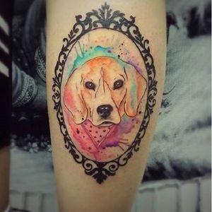 #cachorro #dog #catiorineo #Taizane #TaizaneTatuadora #brasil #brazil #portugues #portuguese