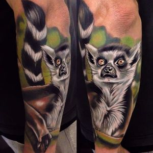 Color realism lemur tattoo by Kristian Kimonides. #realism #colorrealism #lemur #KristianKimonides
