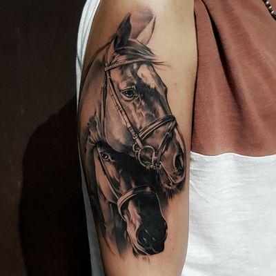 #DanieleMaiorano #MaioInk #gringo #pretoecinza #blackandgrey #realismo #realism #cavalo #horse