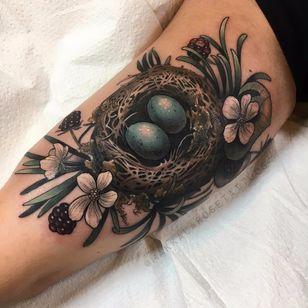 Ninho de passarinho #MakkalaRose #gringa #neotraditional #colorido #colorful #flor #flower #folha #leaf #ninho #nest #ovo #egg #fruta #fruit #nature #natureza #botanica #botanical