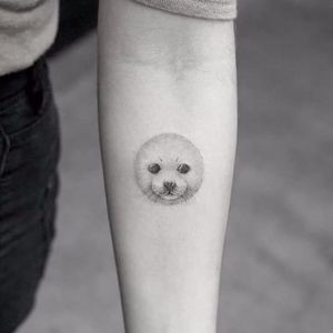 Cute baby seal tattoo by Mr K. #fineline #MrK #blackandgrey #blackandgray #finelineblackandgrey #minimalistic #linework #small #cute #babyseal #seal