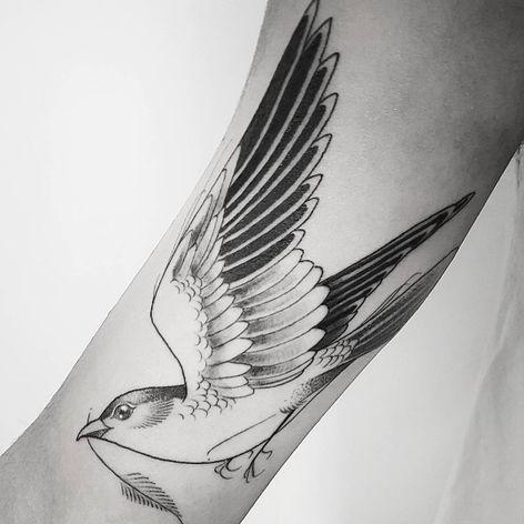 #LeoMarsiglia #brasil #brazil #brazilianartist #tatuadoresdobrasil #blackwork #fineline #pontilhismo #dotwork #ave #passaro #bird