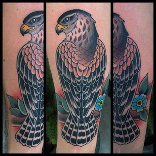 Traditional Hawk Design by Danny Derrick #Hawk #TraditionalHawk #BirdTattoo #TraditionalBird #DannyDerrick
