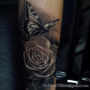 A Monarch Butterfly alighting on a black and grey rose by Vic Vivid (IG-vicvivid). #butterfly #color #realism #Roses #VicVivid