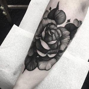 A brilliant black rose by Kelly Violet (IG—kellyviolence). #blacktattoo #blackwork #flowers #kellyviolet