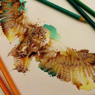 #coruja #owl #aquarela #watercolor #vareta #ilustradorvareta #coloridos #brasil #brazil #portugues #portuguese #desenhos #drawing