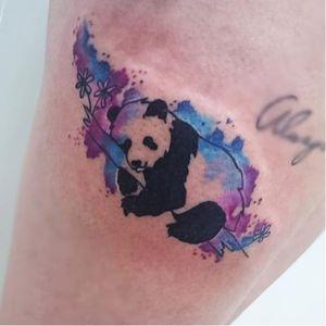 #panda #pandabear #AmandaBarroso #aquarela #watercolor #colorida #colorful #TatuadoraBrasileira #TalentoNacional #brasil