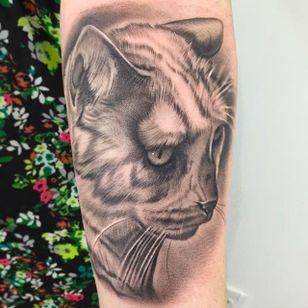 Cute cat portrait tattoo done by Nate Graves. #NateGraves #Sacred #portrait #catportrait #animalportrait #realism #michigan #blackandgrey #realistic #cat