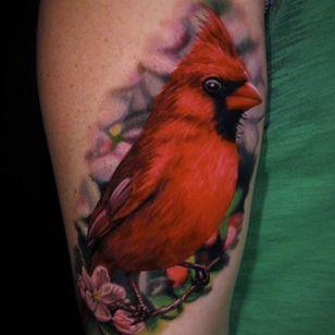 Is it spring? This cardinal by Jamie Schene thinks so. (Via IG - jamie_schene) #colorrealism #cardinal #bird #JamieSchene