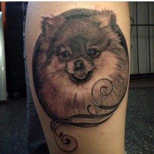 Such a sweet black and grey pomeranian portrait. Tattoo by Dustin Swinks. #dog #pomeranian #blackandgrey #realism #DustinSwinks