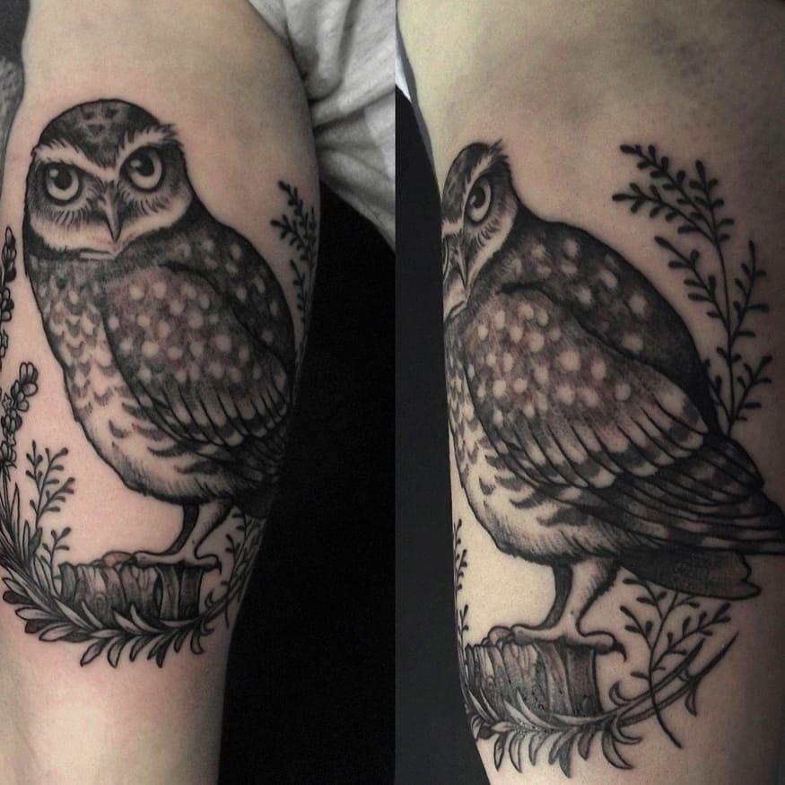 Coruja por Caroline Jamhour! #CarolineJamhour #TatuadorasBrasileiras #TatuadorasdoBrasil #TattooBR #TattoodoBr #owl #coruja