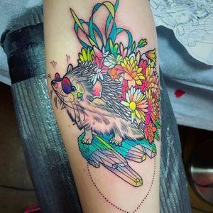 O que dizer desse porco espinho good vibes? #KatieShocrylas #kshocs #tatuagemcolorida #colorfultattoo #gringa #porcoespinho #hedgehog #flowers #flores #cristais #crystals #sunglasses #oculosdesol #goodvibe