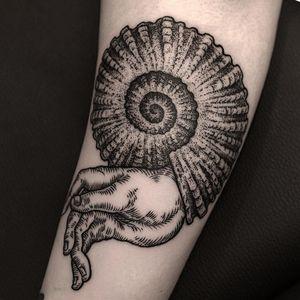The shell my hand lives in. Tattoo by Ilja Hummel #iljahummel #besttattoos #illustrative #blackwork #dotwork #linework #hand #shell #Fibonaccispiral #etching #surreal