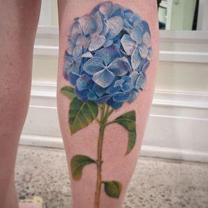 Incredible Hydrangea by Janice Bao Bao (via IG-janice_baobao) #painterlystyle #flower #flowers #janicebaobao #soft #feminine