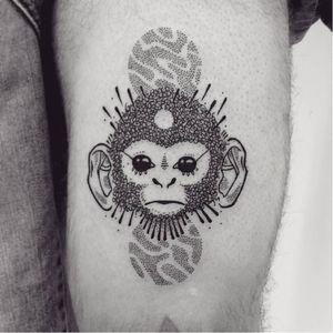 Fofinho #GugaScharf #macacotattoo #monkeytattoo #macaco #monkey #pontilhismo #dotwork #blackwork