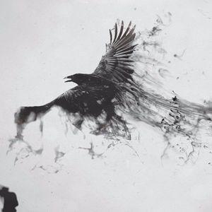 Blackwork crows look sick #blackworkcrow #crow #blackcrow #raven #blackbird #blackworkbird #blackworkartist