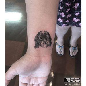 Miniature shih tzu tattoo by Marcus Era. #miniature #dog #shihtzu #petportrait #blackandgrey #MarcusEra