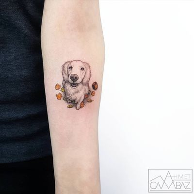 Good Doggy tattoo by Ahmet Cambaz #AhmetCambaz #besttattoos #color #blackandgrey #realistic #newtraditional #small #dog #petportrait #ball #leaves #animal #nature #cute #tattoooftheday