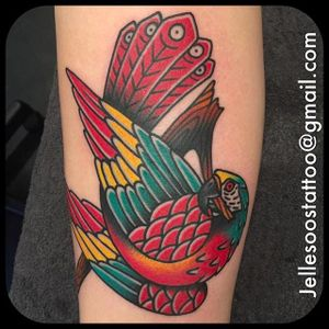 Clean and vibrant parrot tattoo done by Jelle Soos. #JelleSoos #SwanseaTattooCo #traditional #bold #parrot #bird